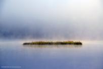 Vass i dimma