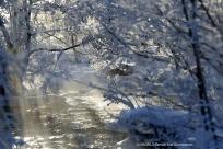 Rimfrost vid vatten Brevensån